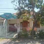 Rumah Terawat&Siap Huni Nirwana Eksekutif 1Lt SHM Affordable Price (22209727) di Kota Surabaya