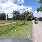 Tanah Di Belu Nusa Tenggara Timur (22211047) di Kab. Belu