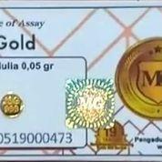 Logam Mulia Minigold 0,05 Gram