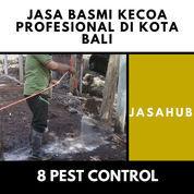 Jasa Basmi Kecoa Profesional Di Kota Denpasar, Bali (22224815) di Kota Denpasar
