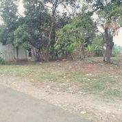 Tanah Kavling Luas 120 Meter Jl Diklat Pemda Bojong Nangka (22227259) di Kab. Tangerang