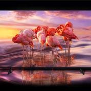 SAMSUNG Qled Tv Smart 4k - Bisa Dicicil Tanpa Kartu Free 1x