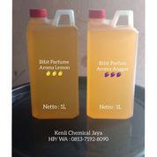Bibit Parfum Jeruk Nipis