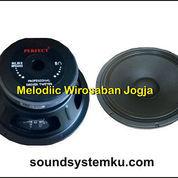 Speaker 10 Inch Perfect 880