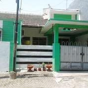 Hot Deal Rumah Kost Aktif Semolowaru Indah 1,5Lt SHM Affordable Price (22317871) di Kota Surabaya