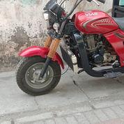 Viar 200cc Long Bak Besar (22324879) di Kota Surabaya
