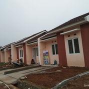Rumah Siap Huni Taman Griya Asri Murah Tanpa Dp Bebas Banjir (22416847) di Kab. Bogor