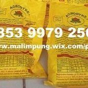 PUPUK AGRODYKE MAKASSAR. (22443031) di Kota Makassar
