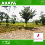 Tanah Kavling Luas 245 Di Palm Valley Araya Kota Malang _ 95.19