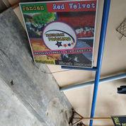 Neon Box Tiang Bekas Martabak Manis (22462591) di Kota Tanjung Balai