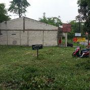 Tanah Di Pinggir Jalan Besar Cocok Untuk Tempat Usaha/Inves.. (22469023) di Cibinong