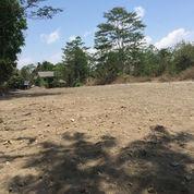 Tanah Matang Di Candi Village, Dapat Angsur 12x Bunga 0%