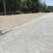 Miliki Aset Tanah Candi Village Area Kampus Uii, Cocok Bangun Kost