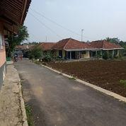 Tanah Murah Strategis Di Kawasan Kampus IPB Darmaga Bogor (22505807) di Kota Bogor