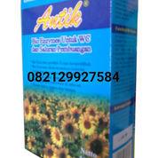 Bubuk Bakteri Antik / Bubuk Bakteri Biotech Pengurai Tinja (22528283) di Kab. Tangerang