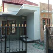Rumah Baru Lantaib1 Dikawasan Sempidi Dkt Puspem Sading Dalung Buduk (22557983) di Kota Denpasar
