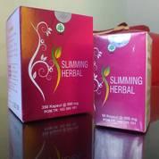 Obat Pelangsing Herbal Alami | Obat Diet Herbal | Penurun Berat Badan | Mengurangi Lemak Dalam Tubuh