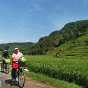 Paket Wisata Jogja - Wisata Sepeda Keliling Desa (22585231) di Kota Yogyakarta