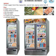 UP RIGHT FREEZER EXPO 1000AL/CN