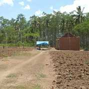 Tanah Kavling Dan Rumah Murah Tegalsari Kepanjen Malang (22585623) di Kab. Malang