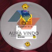 Oli Pelumas Agip Cladium/I 50 30