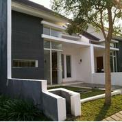 #A1984 Modern Minimalist House At Diamond Regency Sukolilo SHM Under 1M (22599479) di Kota Surabaya