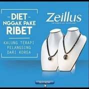 ZEILLIUS KALUNG KESEHATAN