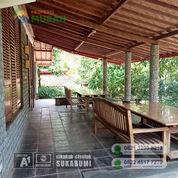 Tanah Dan Villa Beserta Properti Didalamnya Dengan Harga Murah Meriah (22675691) di Kota Malang