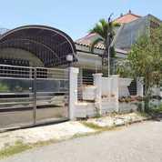 Rumah Di Dharmahusada Utara Bagus Terawat Row Jalan 3 Mobil (22727419) di Kota Surabaya