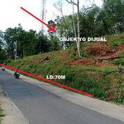 Tanah Strategis Buka Usaha Di Jl Kerjo-Ngargoyoso Karanganyar
