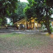 Rumah Tinggal Multifamily, Tanah Sangat Luas Cocok Tempat Usaha, Kantor Di Jagakarsa Jakarta Selatan (22764915) di Kota Jakarta Selatan