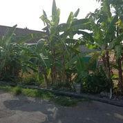 Tanah 69 Are Jln. Gunung Soputan Gg. Ulun Suwi Imam Bonjol