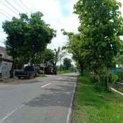 Tanah Siap Dibangun Di Kedawung, Sragen