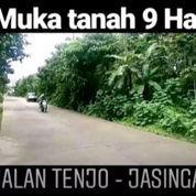 Tanah Tenjo 9 Ha Full SHM Nempel Jalan Raya Kab Bogor Prop Jawa Barat (22800115) di Kab. Bogor