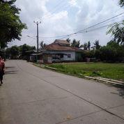 Tanah Murah Bekasi Babelan Aman Buat Cluster Asri Nan Strategis (22834231) di Kota Bekasi