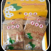 Seruni Chrysanthemum Per Box (22840899) di Kab. Boyolali