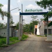 Perumahan Baru Murah Bagus Anthurium Regency Purwokerto Area Selatan (22853003) di Kab. Banyumas