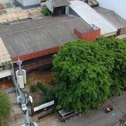Ruko Berderetan Lokasi Strategis Di Pluit (22913323) di Kota Jakarta Utara