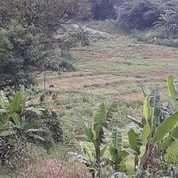 Tanah Strategis Pinggir Jalan Jampang Kalisuren Tajur Halang Bogor (22915743) di Kab. Bogor