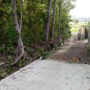 Pekarangan Barat Wisata Kasongan Jogja 826 Mtr (22931335) di Kab. Bantul