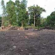 Tanah 616 M Cocok Buat Rumah Di Walantaka Dekat Polda Banten. (22996775) di Kota Serang