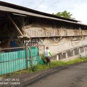 Investasi Peternakan Ayam Pedaging Garut Jabar Kandang & Bangunan (23042727) di Kab. Garut
