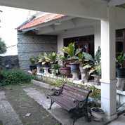 JARANG ADA SHM - Rumah Besar Ngagel Jaya Gubeng Surabaya Timur (23074247) di Kota Surabaya