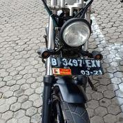 Honda Tiger Custom 2007