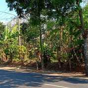 Murah Tanah Kebun Pinggir Jalan Raya Mainroad Wanayasa Purwakarta (23116975) di Kab. Purwakarta