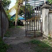 Kos Dan Tanah Di Pusat Kota Negara Jembrana Bali