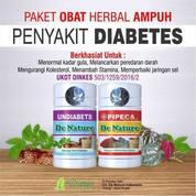 Obat Herbal Penurun Gula Darah - Obat Kencing Manis - Obat Diabetes Herbal De Nature Indo