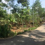 Tanah Untuk Perumahan Di Gedawang Banyumanik Semarang (23162251) di Kota Semarang