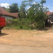 Tanah Datar Cocok Untuk Dibangun Hunian Atau Investasi Di Kepanjen Malang