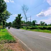 Tanah Siapdi Bangun Selatan Pasar Mojogedang, Karanganyar